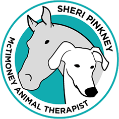 The Horse and Dog Therapist